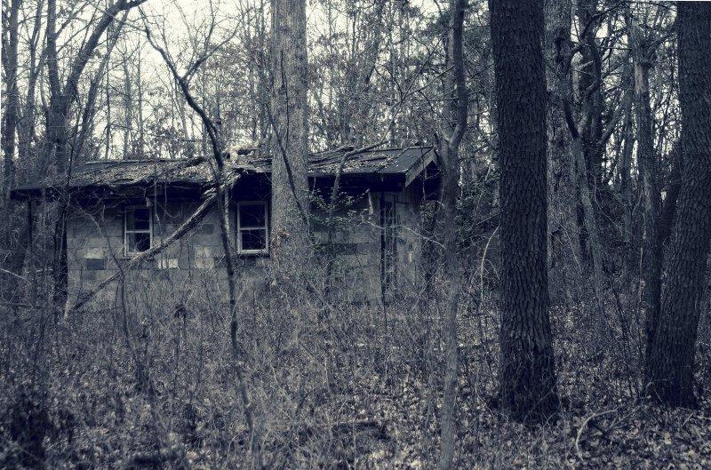 Occhi di merlo halloween il non senso for Fantasmi nelle case